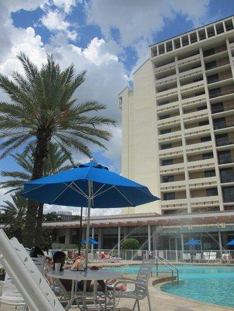 Holiday Inn Orlando – Disney Springs Area: piscina3