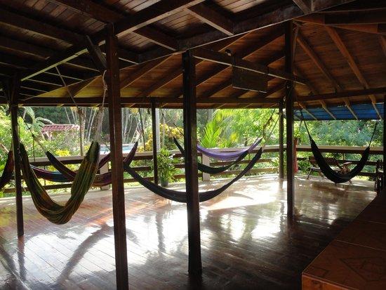 Hammock balcony picture of hotel la cascada montezuma for Balcony hammock