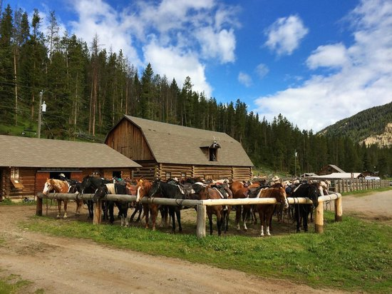 Elkhorn Ranch: Stables where you meet your horse