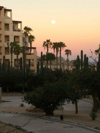Pueblo Bonito Pacifica Golf & Spa Resort: PB Palms - View from Room