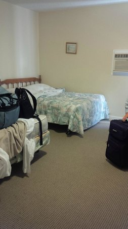 MidTrail Motel & Inn : Other view of room