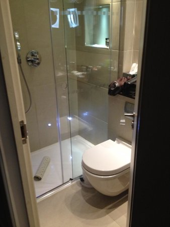 Blakemore Hyde Park: Bathroom, no bath & shower only