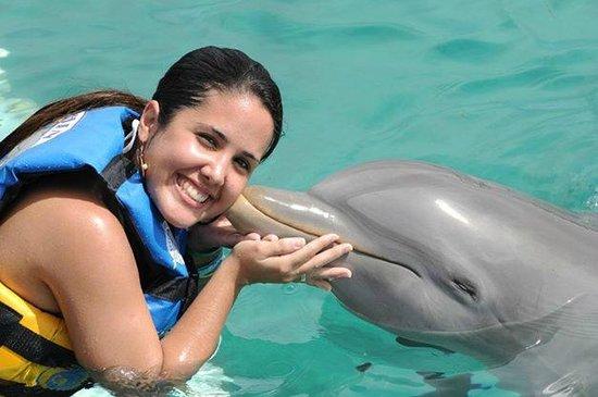 Dolphin Discovery Isla Mujeres: Beijando