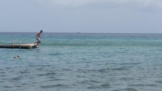 St. Kitts Captain Sunshine Tours: Lets Snorkel