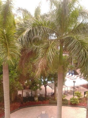 Renaissance Boca Raton Hotel: View From Our Room