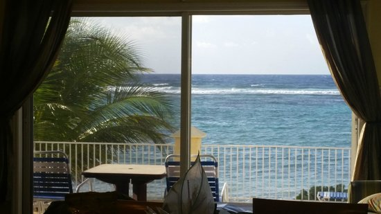 Turtle Nest Inn: View from kitchen/living room.