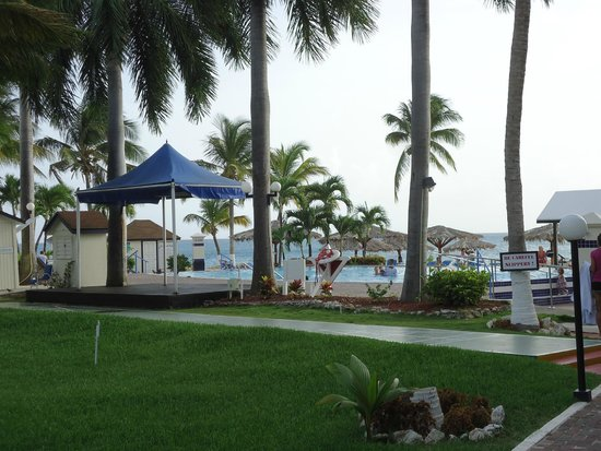 Flamingo Beach Resort : Pool