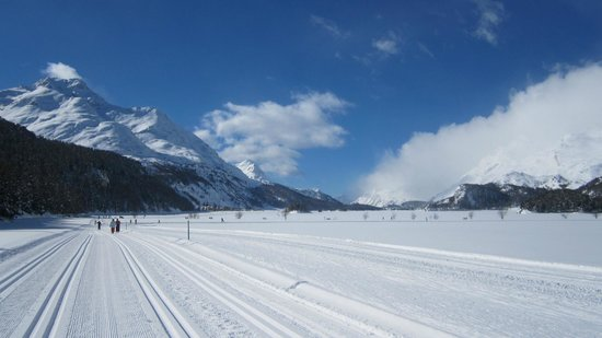 Hotel Schweizerhof : Sils cross country trails- 2 minutes from the hotel