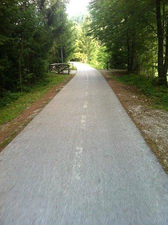 Hotel Spik Alpine Wellness Resort: Cycling track