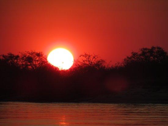 Shackletons : Zambezi sunset