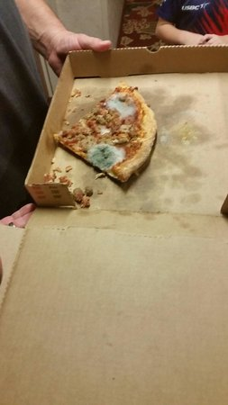 Americas Best Value Inn & Suites-Shakopee/Minneapolis: Moldy pizza that we found in our room,  shut in the desk drawer. GROSS