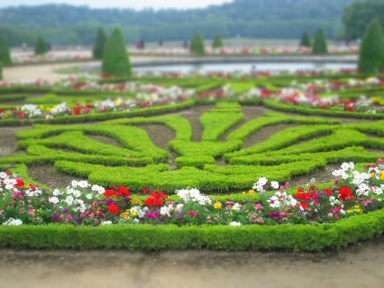 Château de Versailles : Garden Slice