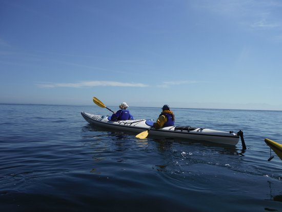 Discovery Sea Kayaks : paddling back after lunch