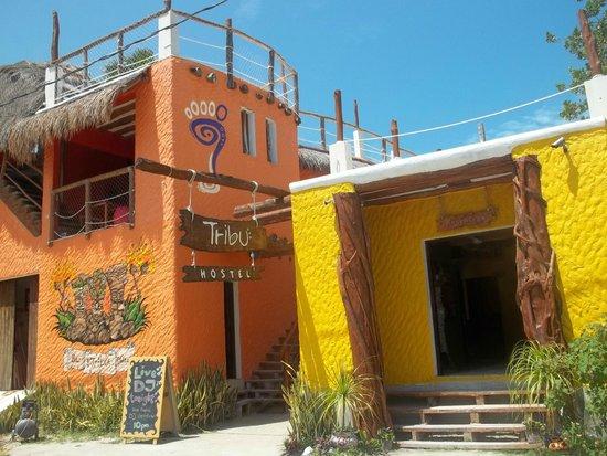 Tribu Hostel: entrada del hostel