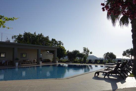 Hillside Studios and Apartments : у бассейна всегда звучит качественная музыка, народ отдыхает