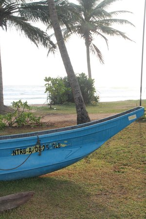 AVANI Bentota Resort & Spa : Blick vom Hotelgelände an den Strand