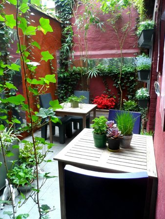 Double Door B&B: Little garden