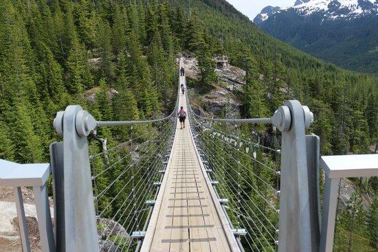 Sea to Sky Gondola : Suspension bridge at the upper station