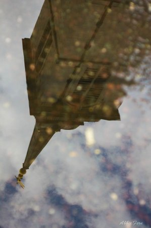 Hairy Goat Photography Tours: Puddle shot!