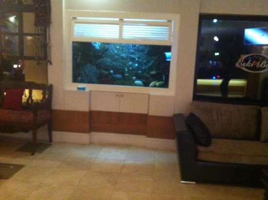 Hisar Holiday Club: Reception