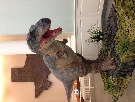 Mayborn Museum Complex: Texas Dinosaurs of the Jurassic