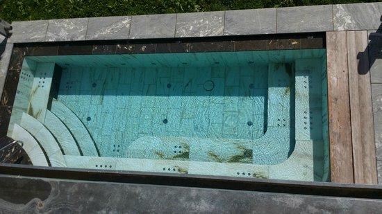 Excelsior Dolomites Life Resort: Outside pool
