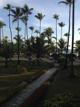 Grand Palladium Palace Resort, Spa & Casino: Beach Area