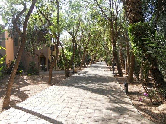 Pullman Marrakech Palmeraie Resort and Spa: Vue de la chambre