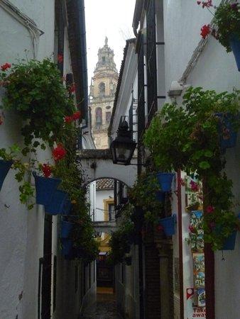 Historic Centre of Cordoba: Cordoba Calle de Flores