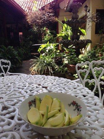 Hotel Real: Mangos verdes en el jardín