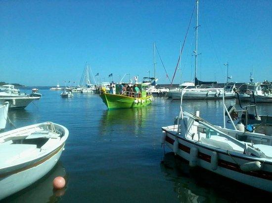 Carqueiranne, France: DOUBLEJEU de retour