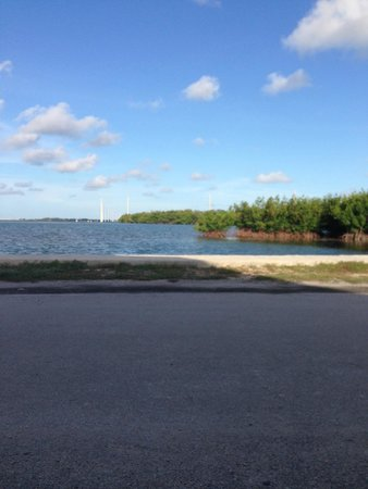 Fiesta Key RV Resort & Marina: View from the front porch