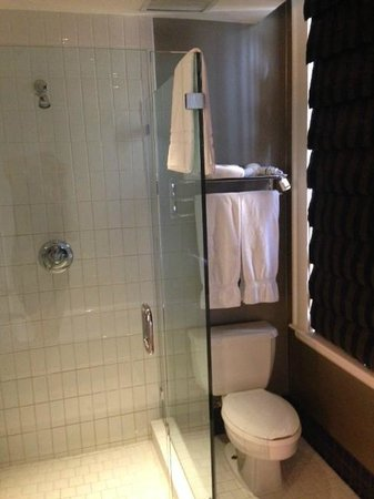 The Ashton Hotel: Shower and Toilet