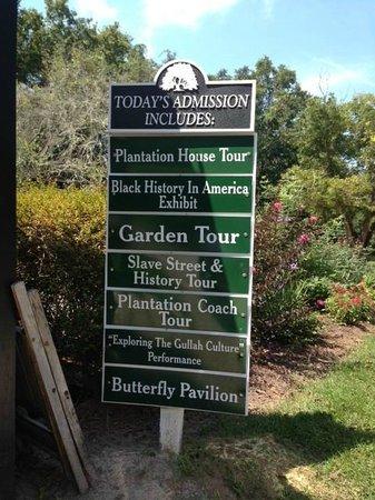 Boone Hall Plantation : Boone Hall
