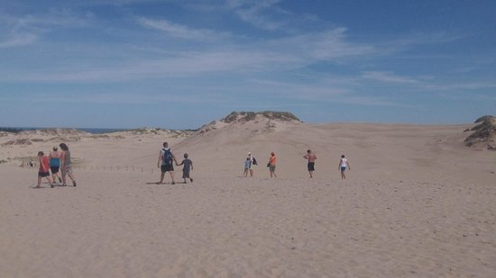 Slowinski National Park: The sand hills