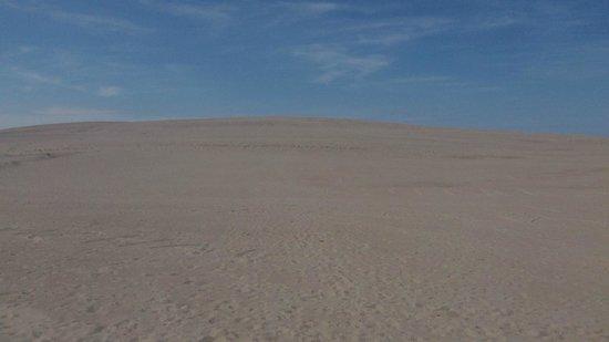 Slowinski National Park: Endless sand