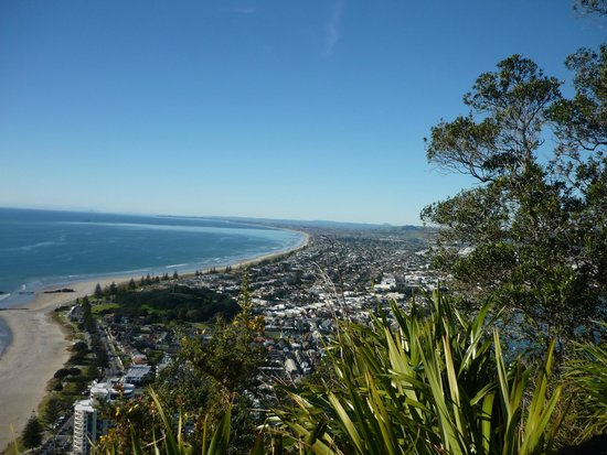 Mount Maunganui Summit Track: From the top of The Mount, the beach and town.