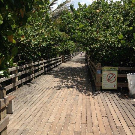 Four Points by Sheraton Miami Beach : way to the beach
