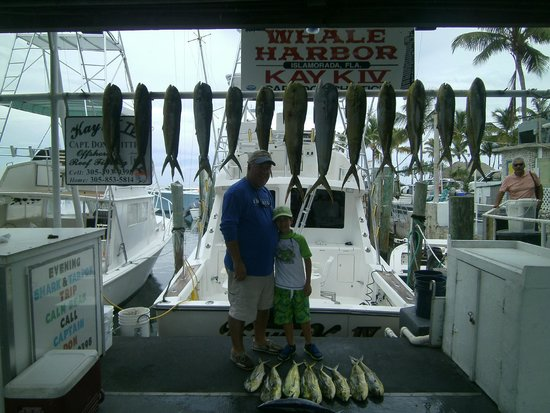 KAY K IV Sport Fishing Charters: Kay K IV fishing trip July 2014