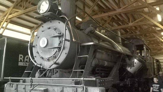 Mt. Rainier Scenic Railroad: Mineral