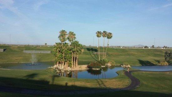 Arizona Grand Resort & Spa: Beautiful oasis