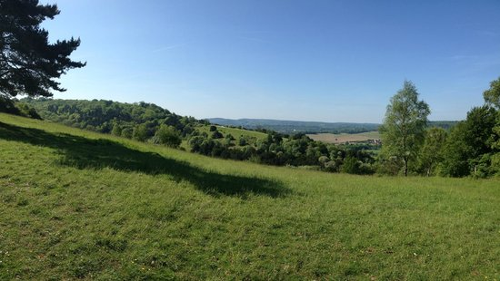 Box Hill: Stunning views