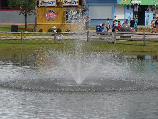 Story Land: Fountain