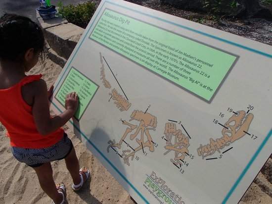Story Land: About dino fossil. This is next to big sand bit where kids use brushes to dig dino fossil
