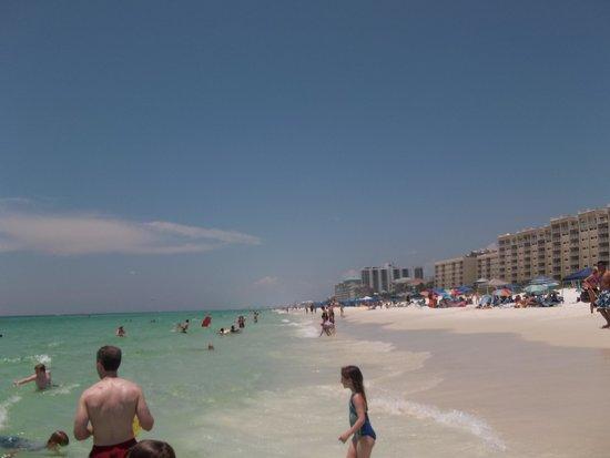 Embassy Suites by Hilton Destin - Miramar Beach : Georgeous beach