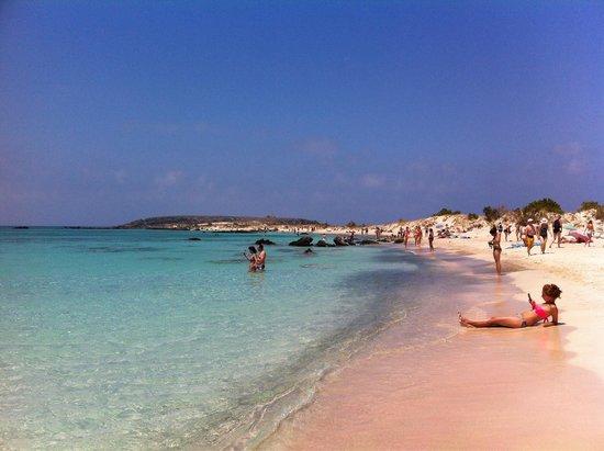 Maltezos Spyridon: Elafonisi : spiaggia rosa e bianca a 90' di auto da Villa Rita