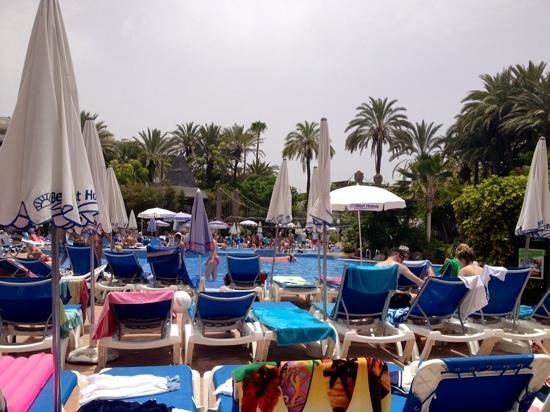 Hotel Best Tenerife: plenty of sunbeds
