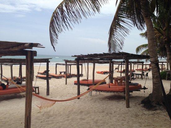 Amansala Eco-Chic Resort + Retreat: Beautiful Tulum!