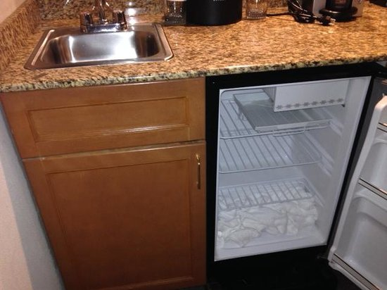 Embassy Suites by Hilton Atlanta Alpharetta: Razor Blade on Counter and Towel in fridge was a nice touch