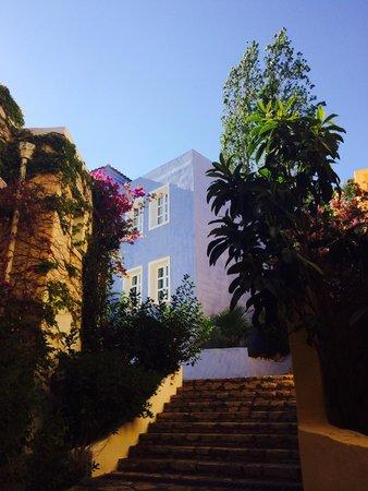 Candia Park Village: Apartments